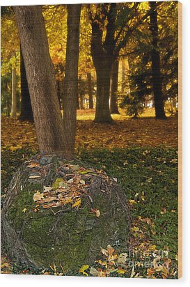 Torch Of Autumn Wood Print by Lee Craig