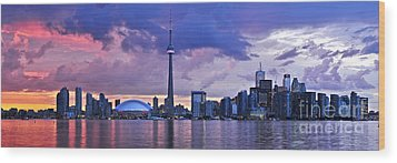 Toronto Skyline Wood Print by Elena Elisseeva