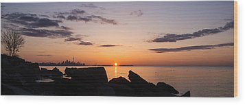 Toronto Skyline Panorama At Sunrise Wood Print by Georgia Mizuleva