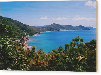 Tortola Bay Wood Print by Kara  Stewart