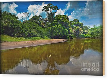 Tortuguero River Canals Wood Print by Gary Keesler