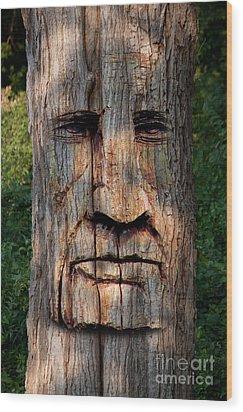 Totum 1 Wood Print
