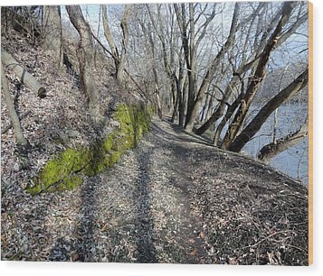 Wood Print featuring the photograph Touch Of Green by Michael Porchik