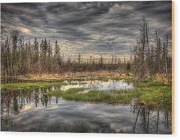 Touch Of Nature Wood Print by Gary Smith