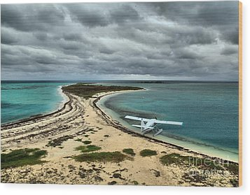 Touchdown At Tortugas Wood Print by Adam Jewell