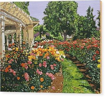 Tournament Of Roses II Wood Print by David Lloyd Glover