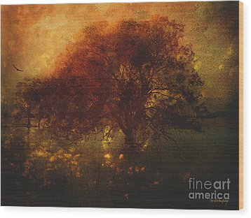 Wood Print featuring the photograph Toward A Secret Sky ... by Chris Armytage