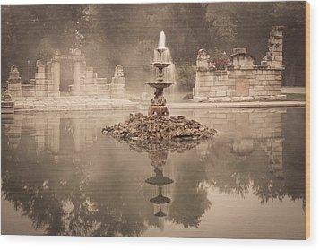 Tower Grove Fountain Wood Print