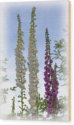 Towering Foxglove Wood Print