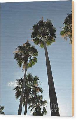 Wood Print featuring the photograph Towering Palms by John Black