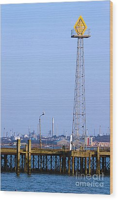 Town Quay Navigation Marker And Fawley Wood Print by Terri Waters