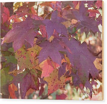 Wood Print featuring the photograph Traces Of Fall by Andrea Anderegg