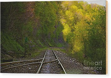 Track Through The Hillside  Wood Print by Peggy Franz