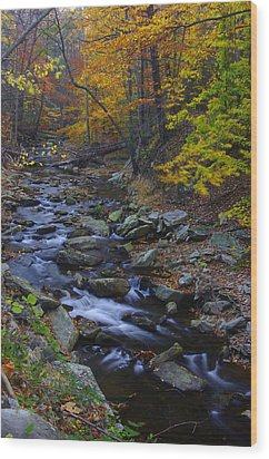 Tracking Color - Big Hunting Creek Catoctin Mountain Park Maryland Autumn Afternoon Wood Print by Michael Mazaika