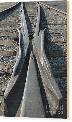 Tracks Wood Print by Dan Holm