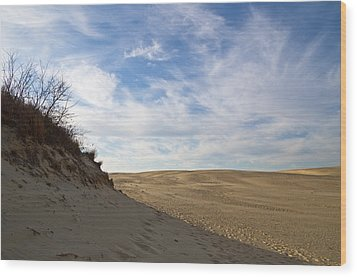 Wood Print featuring the photograph Tracks In The Sand Trail by Gregg Southard
