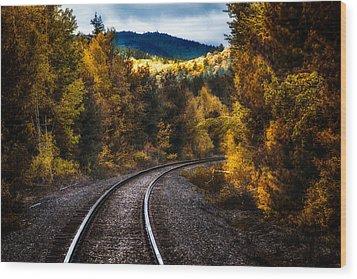Tracks Through The Mountains  Wood Print by Bob Orsillo