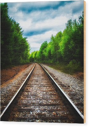 Tracks Through The Woods Wood Print by Bob Orsillo