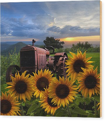 Tractor Heaven Wood Print by Debra and Dave Vanderlaan