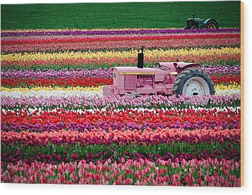 Wood Print featuring the photograph Tractor Races by Brian Bonham