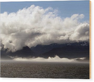 Wood Print featuring the photograph Tracy Arm Fjord by Jennifer Wheatley Wolf