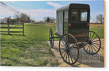 Traditional Amish Buggy Wood Print by Lee Dos Santos