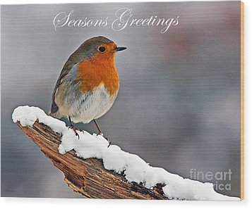 Traditional Christmas Robin Wood Print by Paul Scoullar