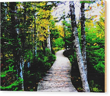 Trail To Autumn Wood Print by Zinvolle Art