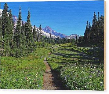Trail To Mazama Ridge Wood Print