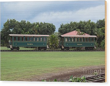 Train Lovers Wood Print by Suzanne Luft