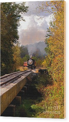Train Through The Valley Wood Print by Robert Frederick