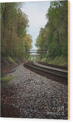 Train Tracks Wood Print by Suzi Nelson