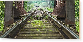 Train Trestle 2 Wood Print