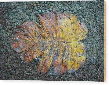 Wood Print featuring the photograph Trampled Leaf by Britt Runyon
