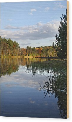 Tranquil Autumn Landscape Wood Print by Christina Rollo