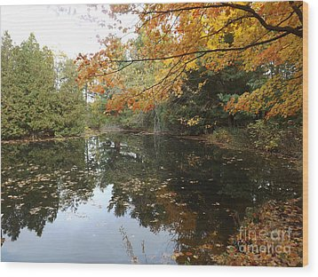 Wood Print featuring the photograph Tranquil Getaway by Brenda Brown
