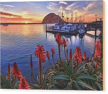 Tranquil Harbor Wood Print by Beth Sargent
