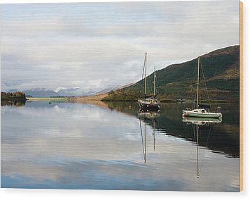 Tranquil Scottish Scene Wood Print by Jacqi Elmslie
