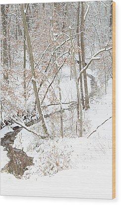 Tranquil Winters Creek Wood Print