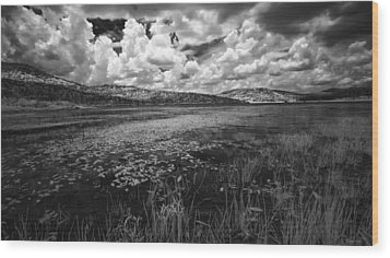 Wood Print featuring the photograph Tranquil by Yvonne Emerson AKA RavenSoul