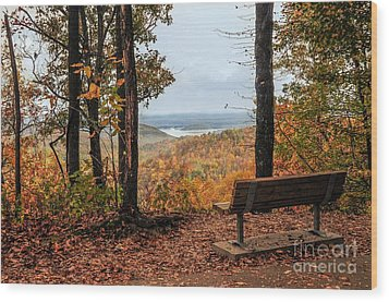 Wood Print featuring the photograph Tranquility Bench In Great Smoky Mountains by Debbie Green