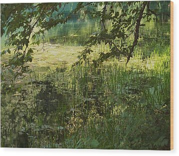 Tranquility Wood Print by Mary Wolf