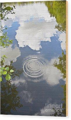 Tranquillity Wood Print by Jan Bickerton