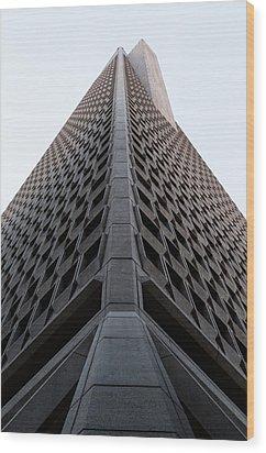 Transamerica Spine Wood Print by John Daly