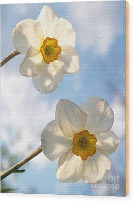 Transcendent Jonquils And Sky Wood Print by Anna Lisa Yoder