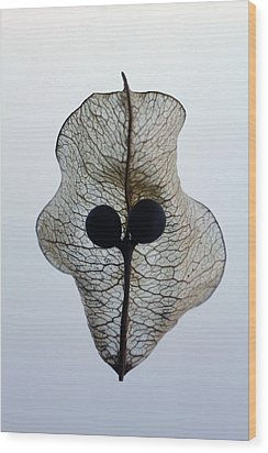 Transparence Wood Print by Richard Stephen