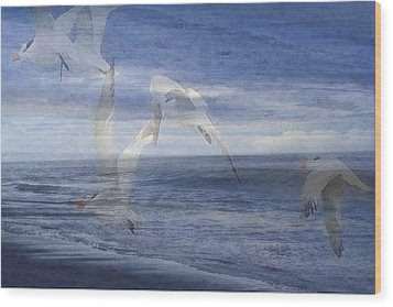 Transparent Flight Wood Print by James Chesnick