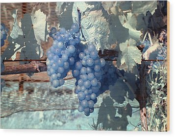 Transparent Grapes Wood Print by Rebecca Parker