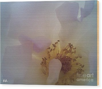 Wood Print featuring the photograph Transparent Whisper by Geri Glavis