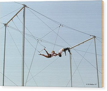 Trapeze School Wood Print by Brian Wallace